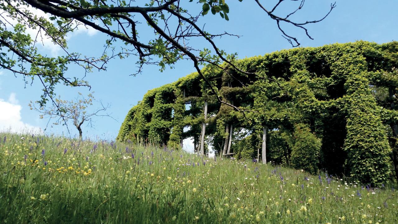 Un roccolo, tipico del paesaggio lombardo.