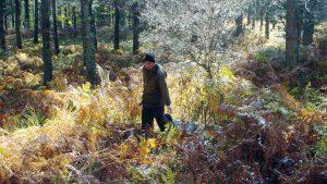Cacciatore nel bosco con cane