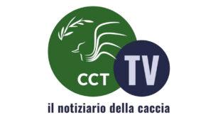 IL NOTIZIARIO CCT TV