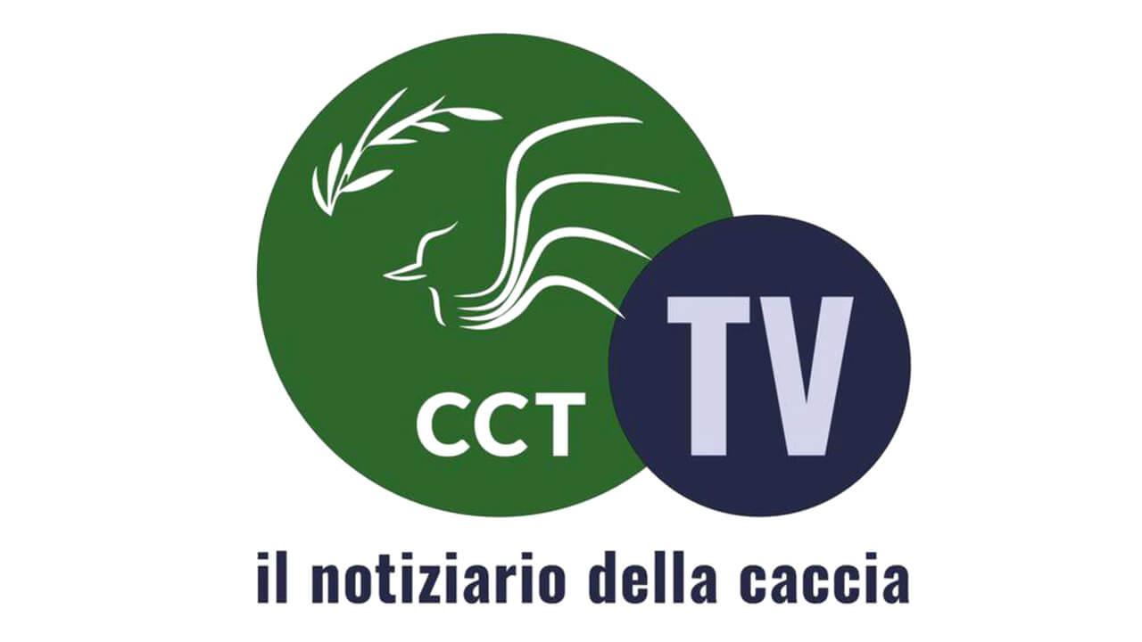 Logo Cct tv