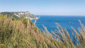 Vista panoramica di mare nelle Marche
