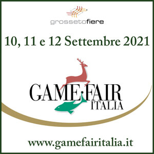 Game-Fair 2021