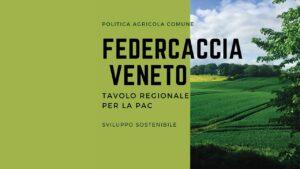 Fidc Veneto e tavolo regionale Pac