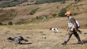 L'attività cinofila nella Regione Campania